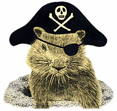 Groundhog Pirate